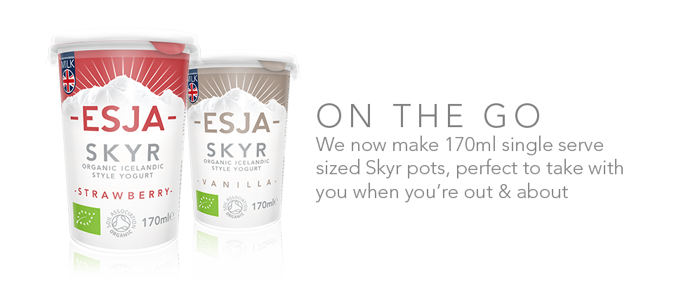On the go with ESJA Skyr
